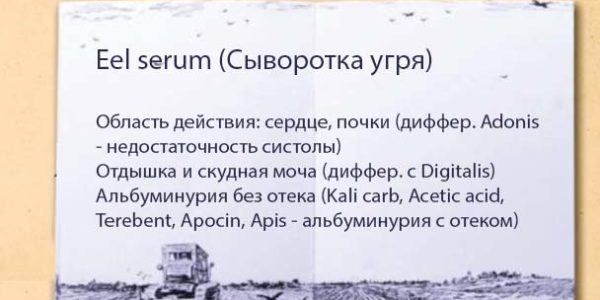 eel serum
