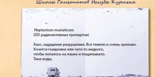 neptun-mur