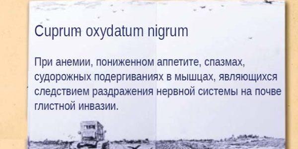 Cuprum oxydatum nigrum