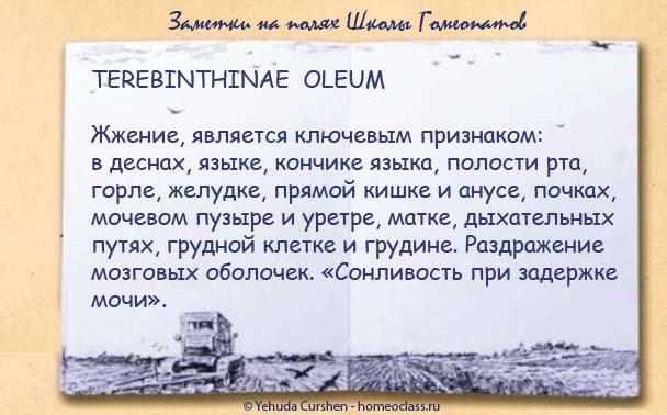 TEREBINTHINAE OLEUM