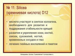 Слайд12